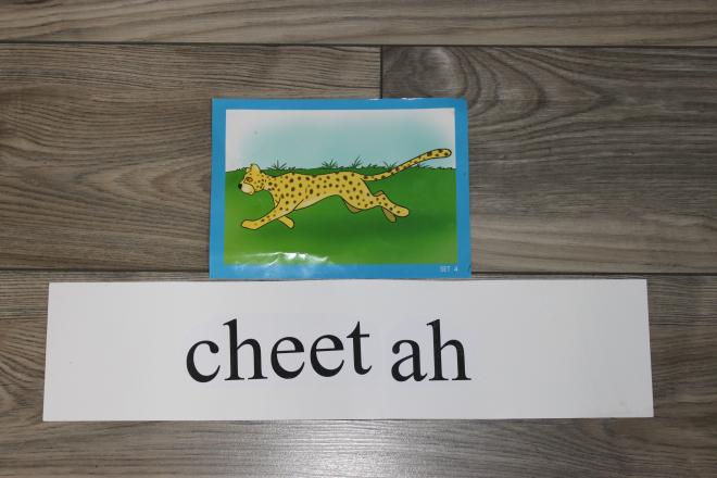 Kolejne słowa i rozwój mowy dziecka wychowywanego w dwujęzyczności zamierzonej (Maja skończyła 14,5 miesiąca)
