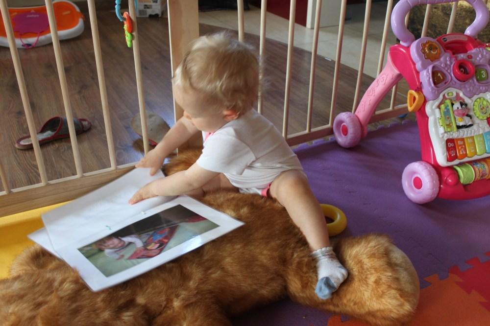 Doman i czytanie globalne