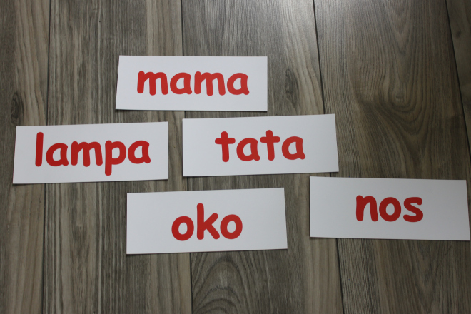 The Doman method with daddy- whole-word reading in the Polish language (Maja is 12 months old