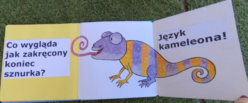 Książka dla dwulatka