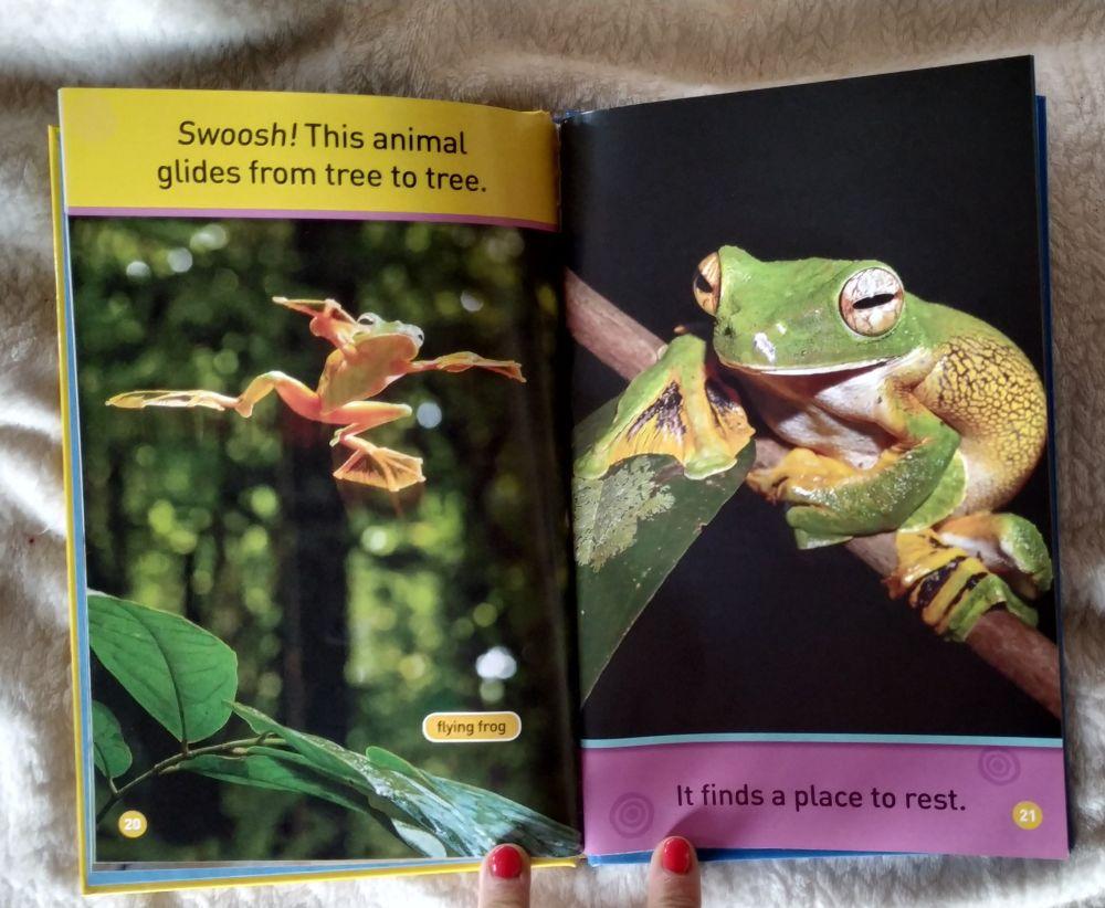 książki angielskie
